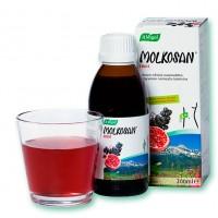 Молочная сыворотка с фруктами для кишечника Molkosan Fruit 200 мл A.Vogel